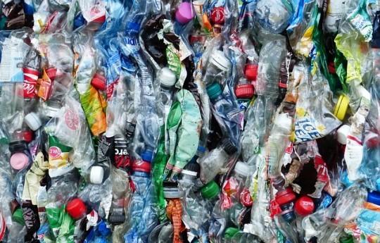 Grazie al riciclaggio dei rifiuti, nasce in India la prima casa per animali