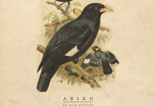 La vita segreta degli Abiku