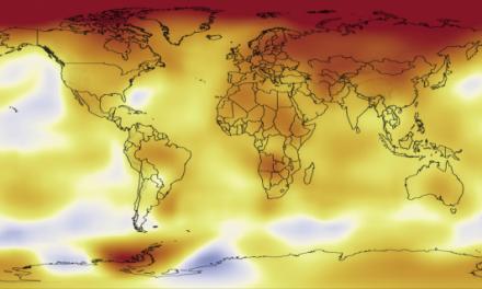 Allarme clima: il 2014 è stato l'anno più caldo di sempre