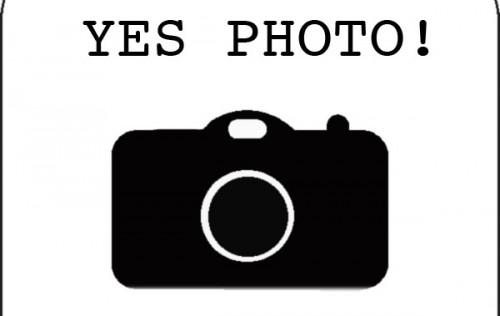 Yes photo! Fotografare (si fa per dire) e tutelare l'arte.