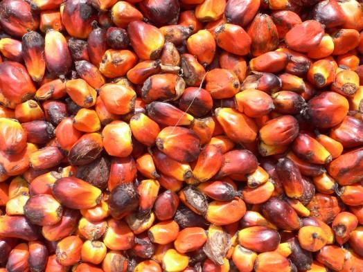 Expo 2015, il padiglione della Malesia difende l'olio di palma