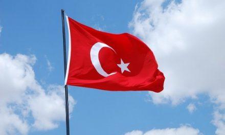 La Turchia di Erdogan: complice dell'IS e grottesca sede del G20