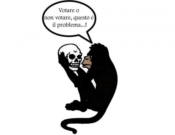 scimmia elezioni