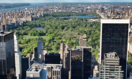 A New York una cintura verde contro gli uragani