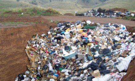 Beirut sommersa dai rifiuti, la gente in piazza contro le autorità