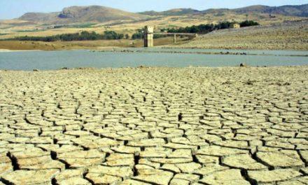 Aumento delle temperature, si prevedono danni economici