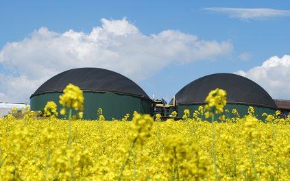 Deiezioni umane: il biogas che non ti aspetti