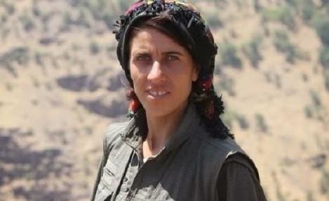 Nel nome di Avesta e delle combattenti curde: intervista a Marco Rovelli