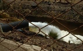 Terbutilazina: erbicida che minaccia il bacino della Val Padana
