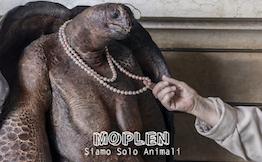 Con i Moplen il pop torna alle sue migliori origini