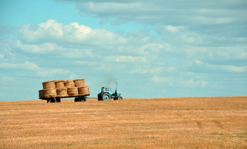 Agricoltura, aumentano le emissioni di gas serra: Usa maggiore responsabile