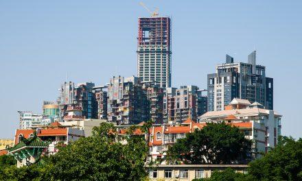 La folle corsa al verde in Cina: alberi estirpati da ripiantare in città