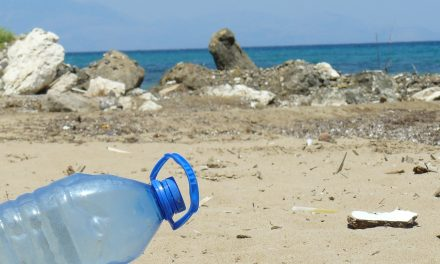 Oceani: Legambiente propone soluzioni contro rifiuti e plastica