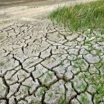 Clima: un grado e mezzo in più nel 2040, danni ad ambiente ed economia