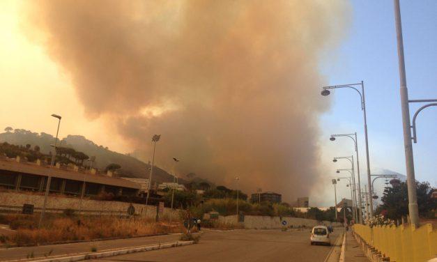 La Sicilia brucia: cosa si nasconde dietro gli incendi?