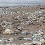 Emergenza plastica, trovate microparticelle anche nell'uomo