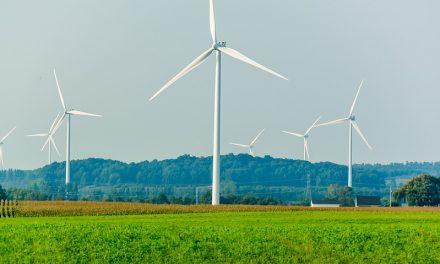Energia rinnovabile: abbatte i costi e aumenta le opportunità