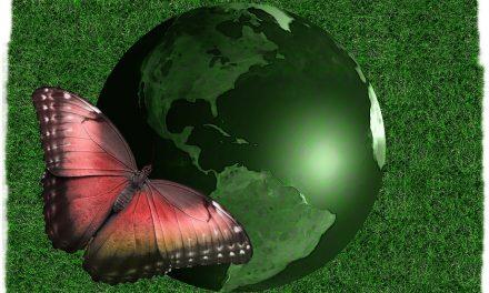 Economia circolare: non più solo utopia