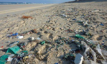 Microplastiche nei cosmetici, un'altra minaccia per il mare