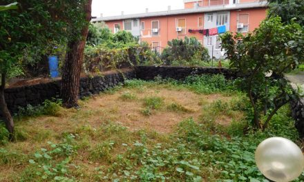 """Una raccolta fondi per la casa della memoria """"Il Giardino di Scidà"""""""