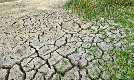 Emergenza siccità in Italia: 2017 anno più secco degli ultimi due secoli
