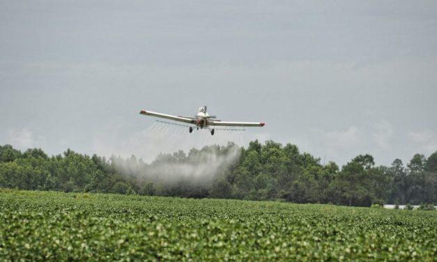 OGM, probabilmente sconvenienti