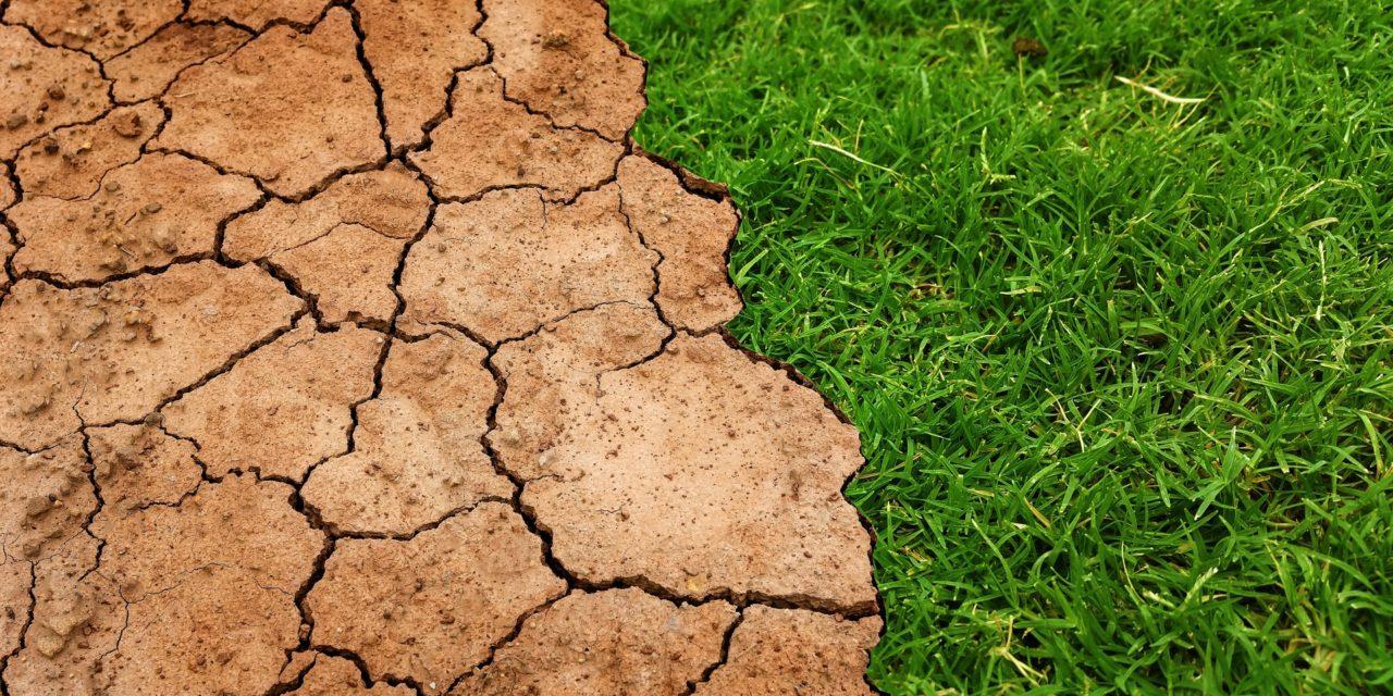 Sul clima non ci sono buone notizie