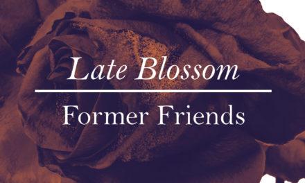 """La coinvolgente """"fioritura"""" rock dei Former Friends"""