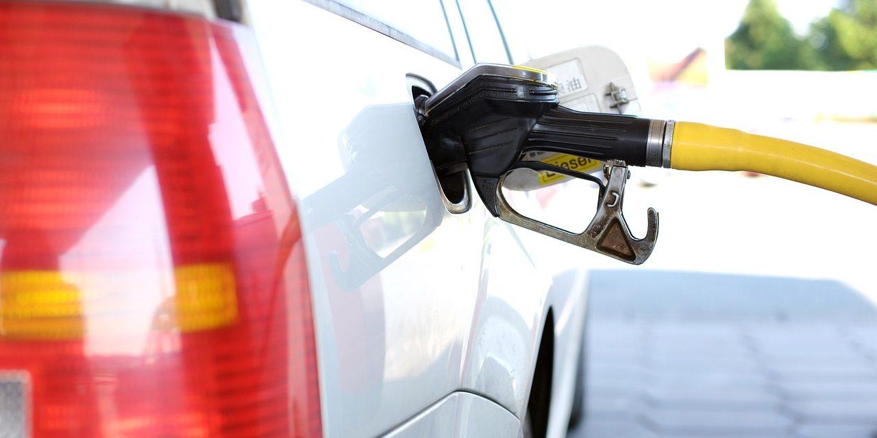#NotInMyTank: vietare l'olio di palma anche nella produzione di carburanti