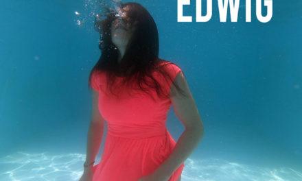 L'ipnotica unicità degli Edwig nel loro bel disco d'esordio