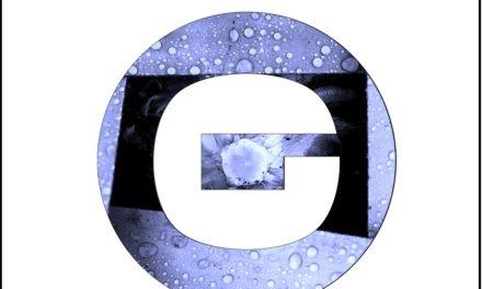 D.In.Ge.Cc.O, indie-elettronica che arriva dritta al punto