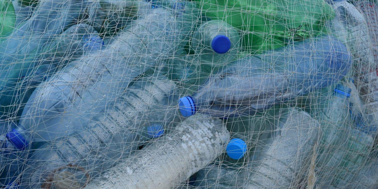 5 grammi: ecco quanta plastica mangiamo ogni settimana