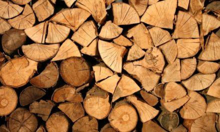 Riscaldamento in casa: il legno è meno inquinante e più economico