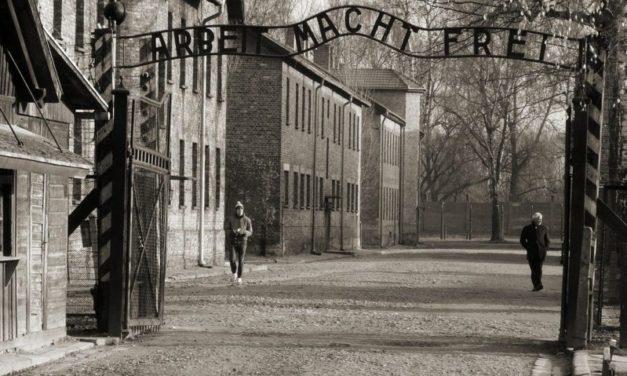 L'inchiostro della memoria e il muro dell'indifferenza
