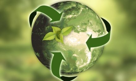 Green New Deal: economia europea sostenibile e a difesa dell'ambiente