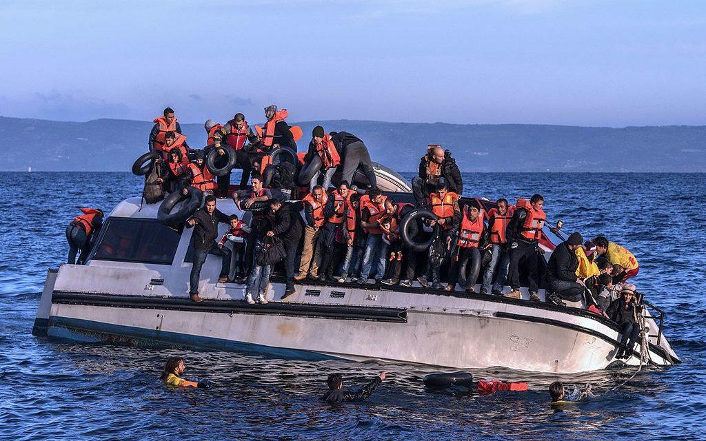 L'Europa è gravemente malata di crudeltà