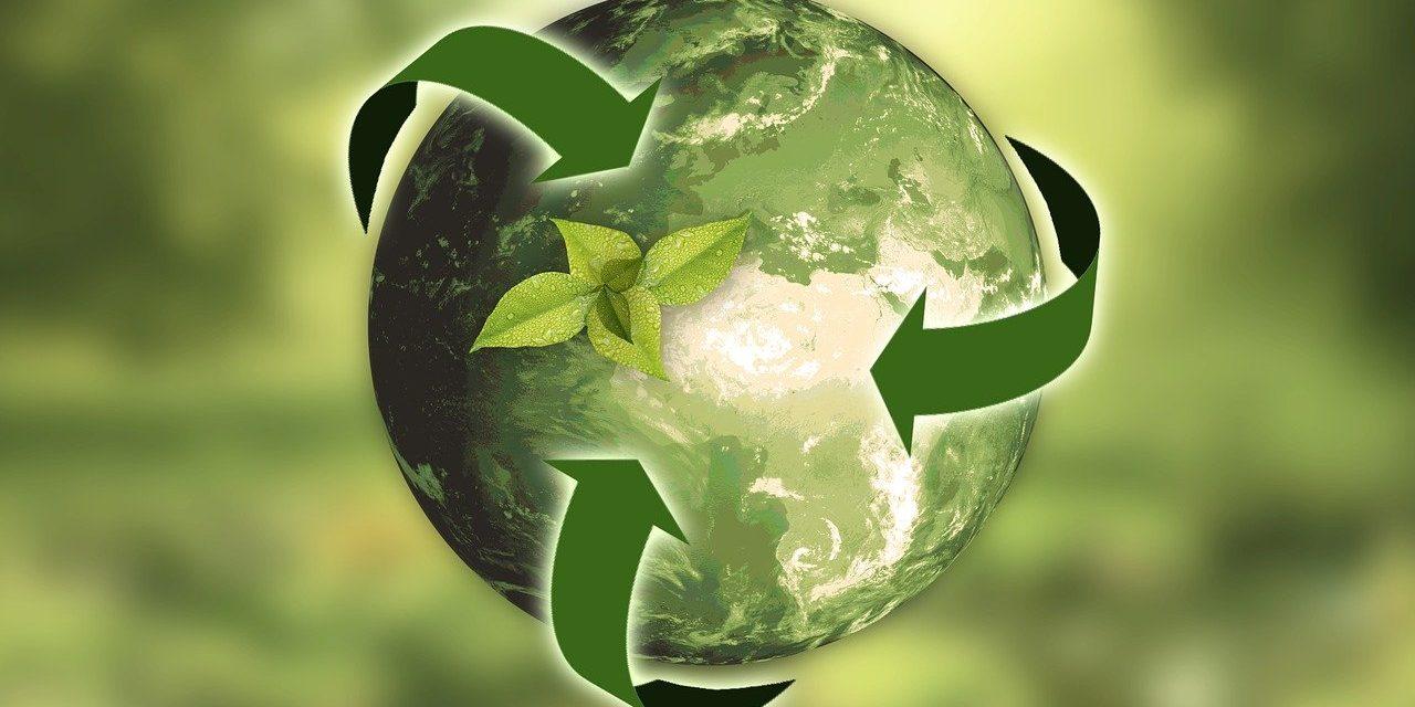 Economia sostenibile: nasce l'European Alliance for Green Recovery