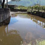 Acqua rossa e tumori, un dramma che dura da 50 anni: nasce l'iniziativa Sarno2020