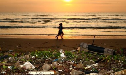 Stop Microplastiche: Greenpeace continua a denunciare la grave situazione nei mari