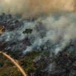 L'Amazzonia brucia ancora: una petizione di Greenpeace chiede all'UE di intervenire