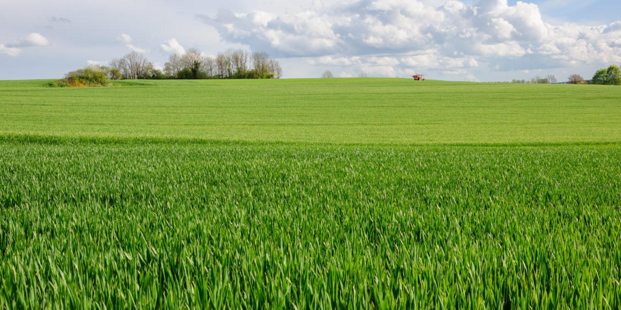 Scozia: idrogeno verde per rilanciare il rinnovabile e superare la crisi