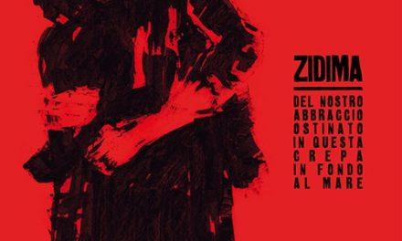 Empatia e tanta energia rock nell'ultimo album dei ZiDima