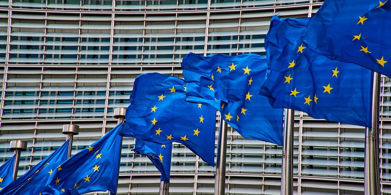 Una consultazione europea chiede all'UE di fermare i prodotti legati a deforestazione e violazioni