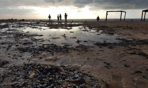 Secondo le indagini di Greenpeace il disastro ambientale in Israele non è stato un incidente