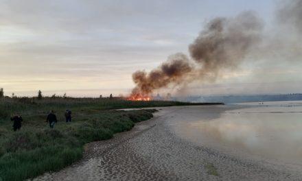 In Sicilia già iniziati gli incendi, anche Vendicari brucia: il Movimento Antincendi Ibleo fa appello alle istituzioni