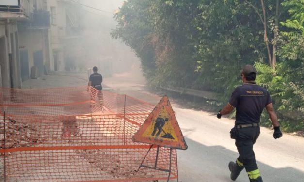 L'Italia brucia: dalla Sardegna a Noto le fiamme colpiscono anche le città