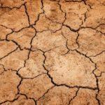 Caldo record e siccità: il progetto di Coldiretti per il risparmio di acqua