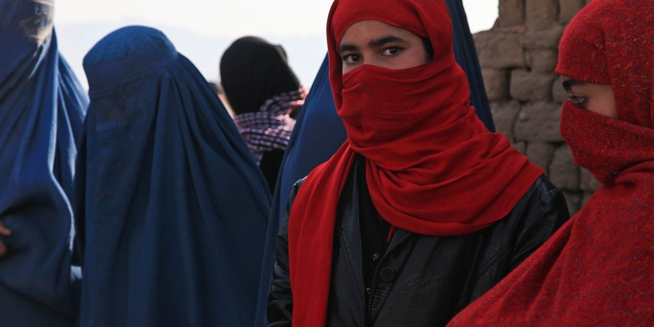 I talebani (falsamente) inconsapevoli